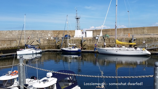 Somewhat dwarfed in Lossiemouth harbour